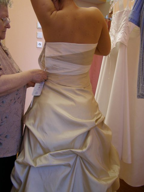 Včelička a čmeláček 9. 6. 2006 ve 12 hod. - Tak o těhlech šatech z Nevěsty jsem hodně uvažovala, ale nakonec jsem si to rozmyslela. Možná kdyby byl ten korzet jednobarevný...