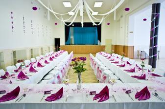 Stropy a zdi jsme měli v režii my...stůl a židle catering...celkově jsem byla moc spokojená :)