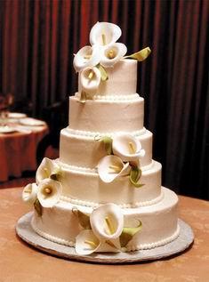 Naše 13.6.2008 - krstny torta - taktiez v mensom vydani :)