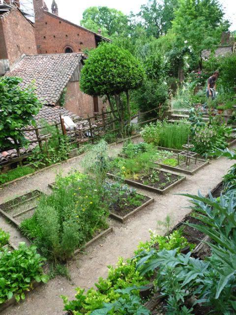 Terasa, záhrada - Obrázok č. 38