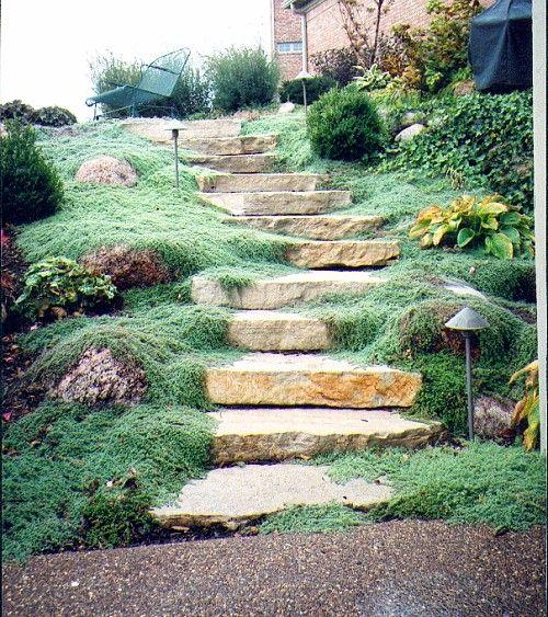Terasa, záhrada - Obrázok č. 47