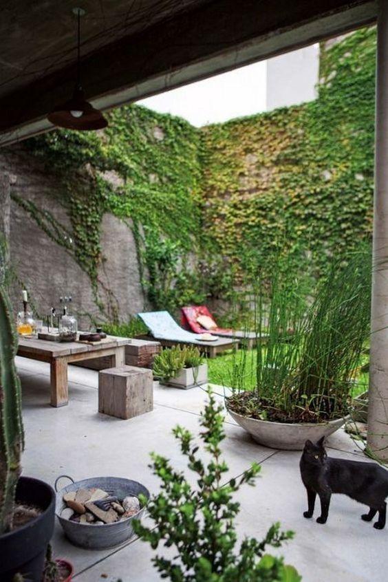 Terasa, záhrada - Obrázok č. 84