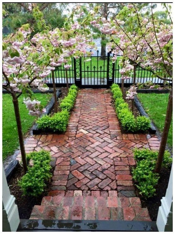 Terasa, záhrada - Obrázok č. 85