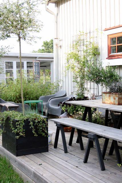 Terasa, záhrada - Obrázok č. 100