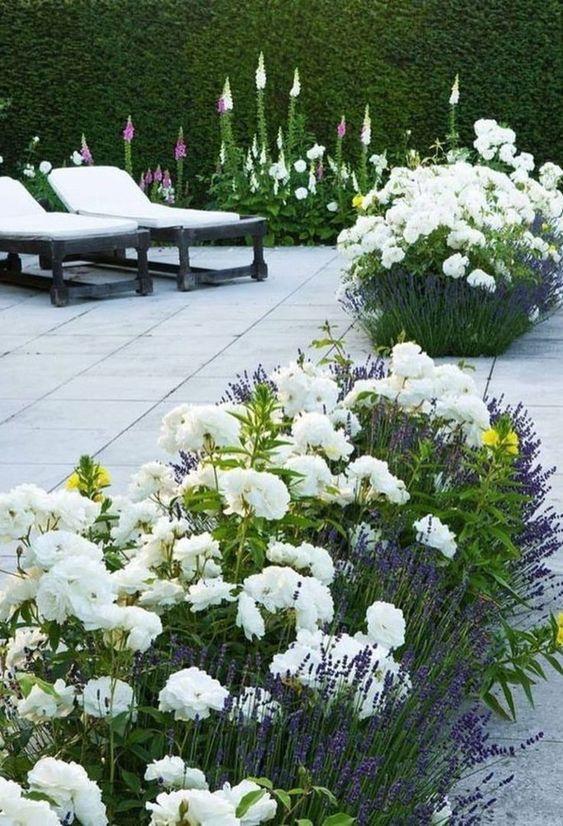 Terasa, záhrada - Obrázok č. 141