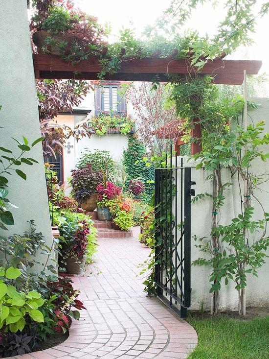 Terasa, záhrada - Obrázok č. 221