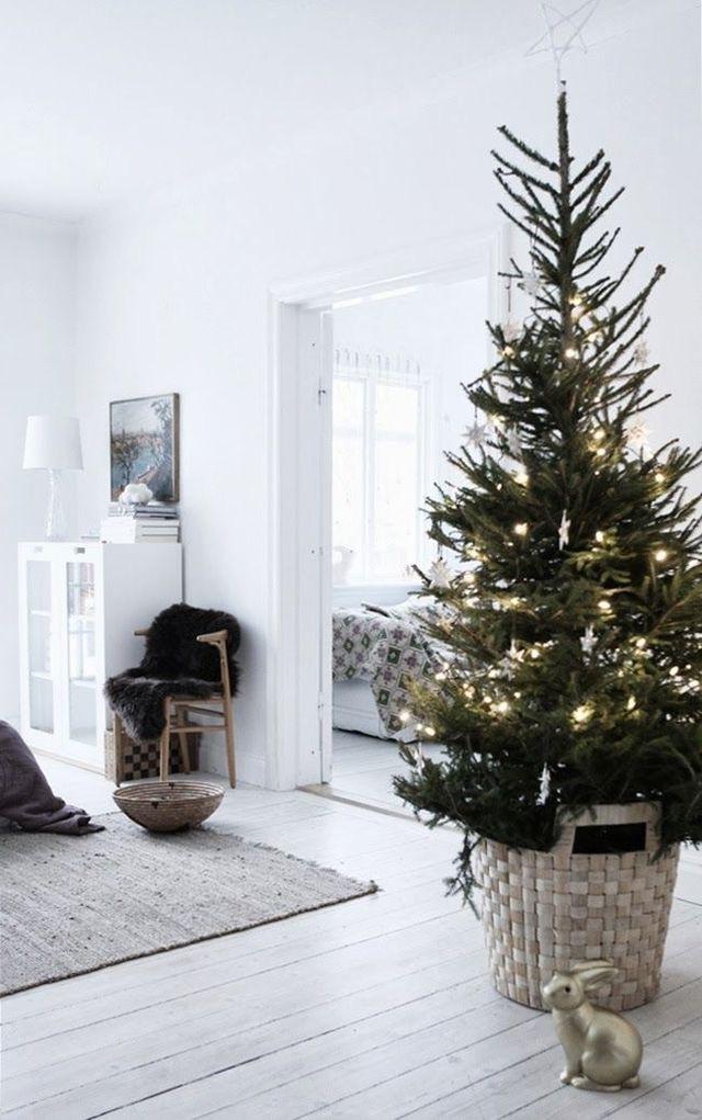 Najväčší symbol Vianoc, aký bude tento rok ... - Obrázok č. 4