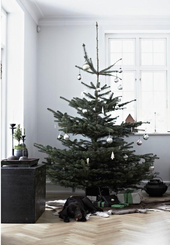 Najväčší symbol Vianoc, aký bude tento rok ... - Obrázok č. 9