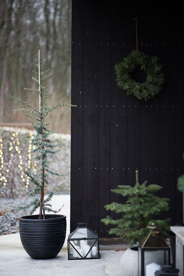 Najväčší symbol Vianoc, aký bude tento rok ... - Obrázok č. 11