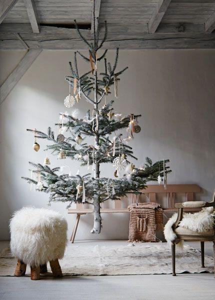 Najväčší symbol Vianoc, aký bude tento rok ... - Obrázok č. 13