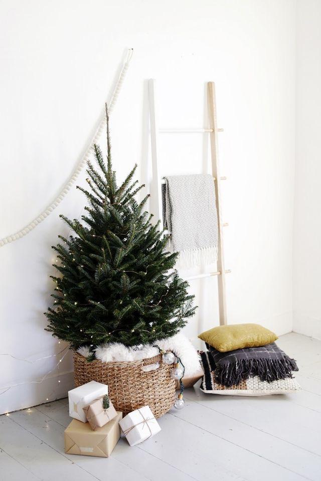 Najväčší symbol Vianoc, aký bude tento rok ... - Obrázok č. 31