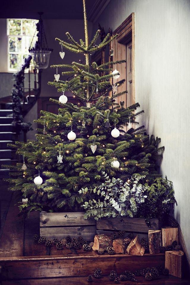Najväčší symbol Vianoc, aký bude tento rok ... - Obrázok č. 41