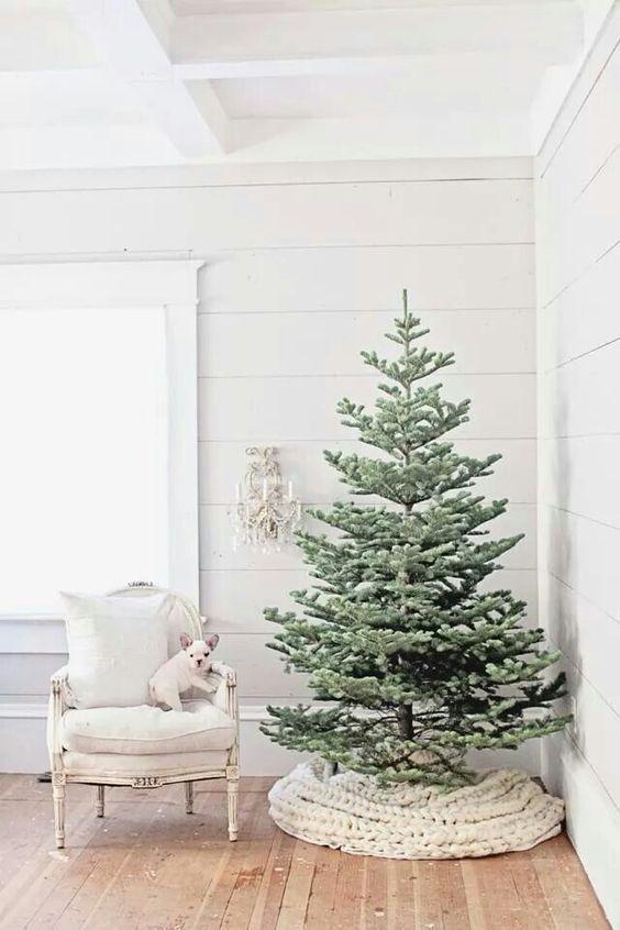 Najväčší symbol Vianoc, aký bude tento rok ... - Obrázok č. 49