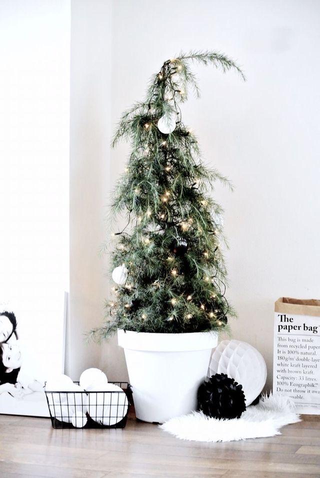 Najväčší symbol Vianoc, aký bude tento rok ... - Obrázok č. 59