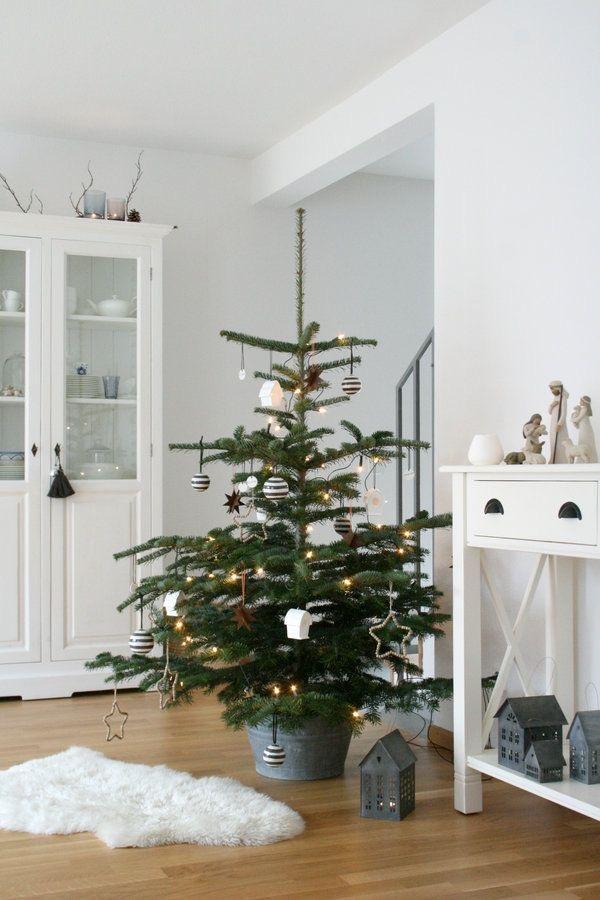 Najväčší symbol Vianoc, aký bude tento rok ... - Obrázok č. 65