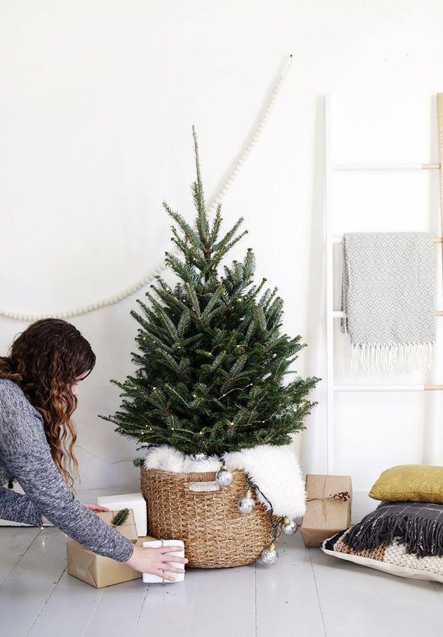Najväčší symbol Vianoc, aký bude tento rok ... - Obrázok č. 77
