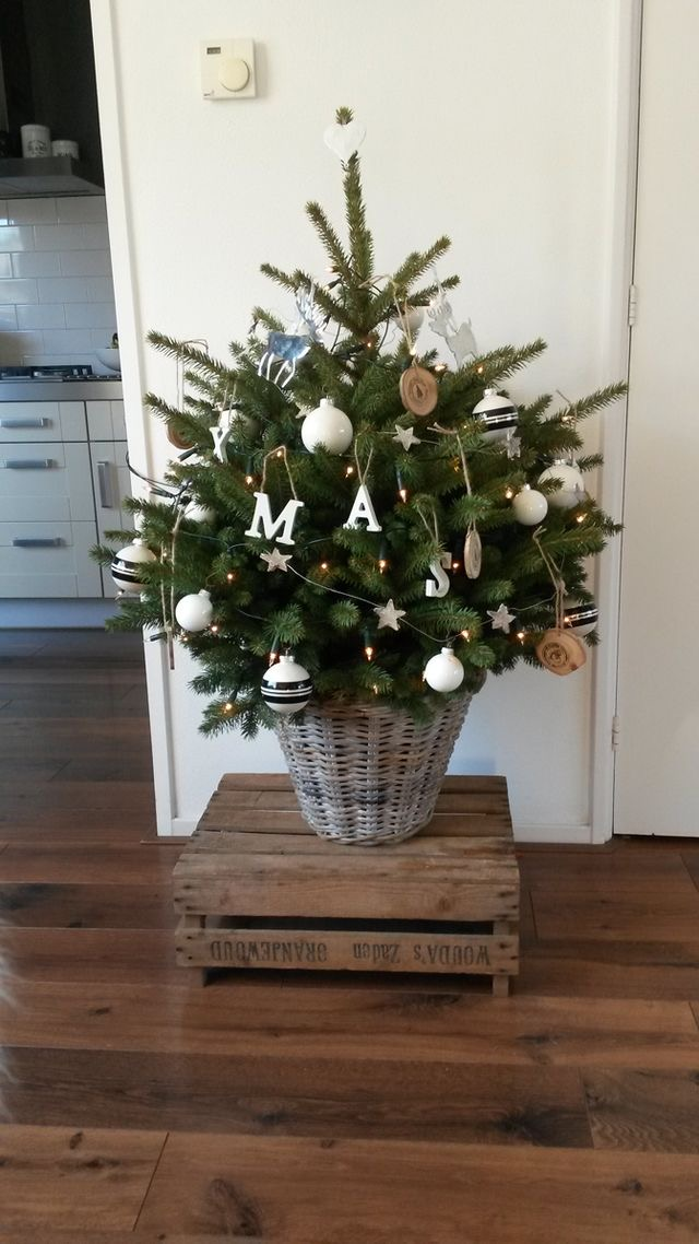 Najväčší symbol Vianoc, aký bude tento rok ... - Obrázok č. 80