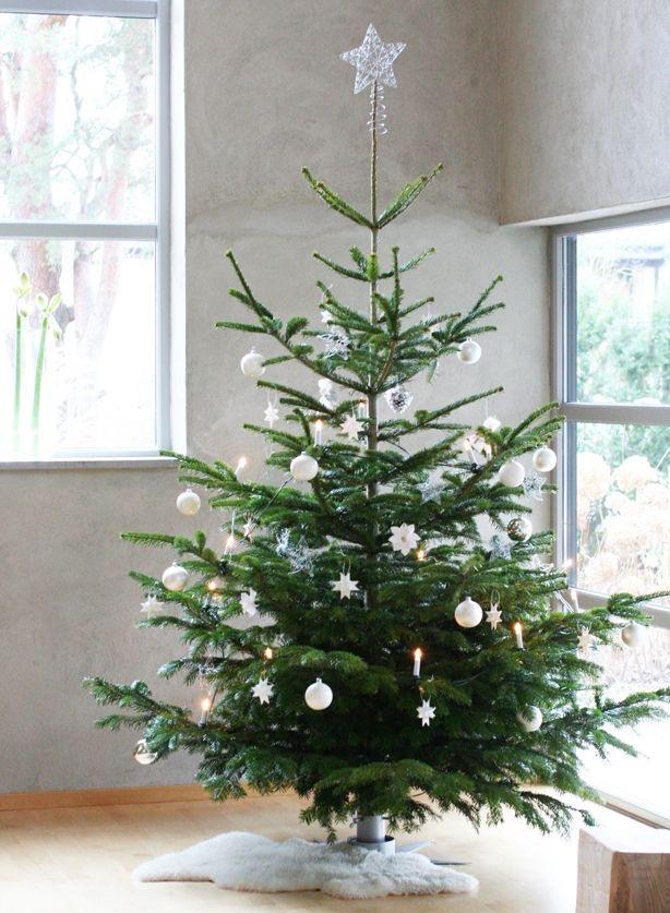 Najväčší symbol Vianoc, aký bude tento rok ... - Obrázok č. 83