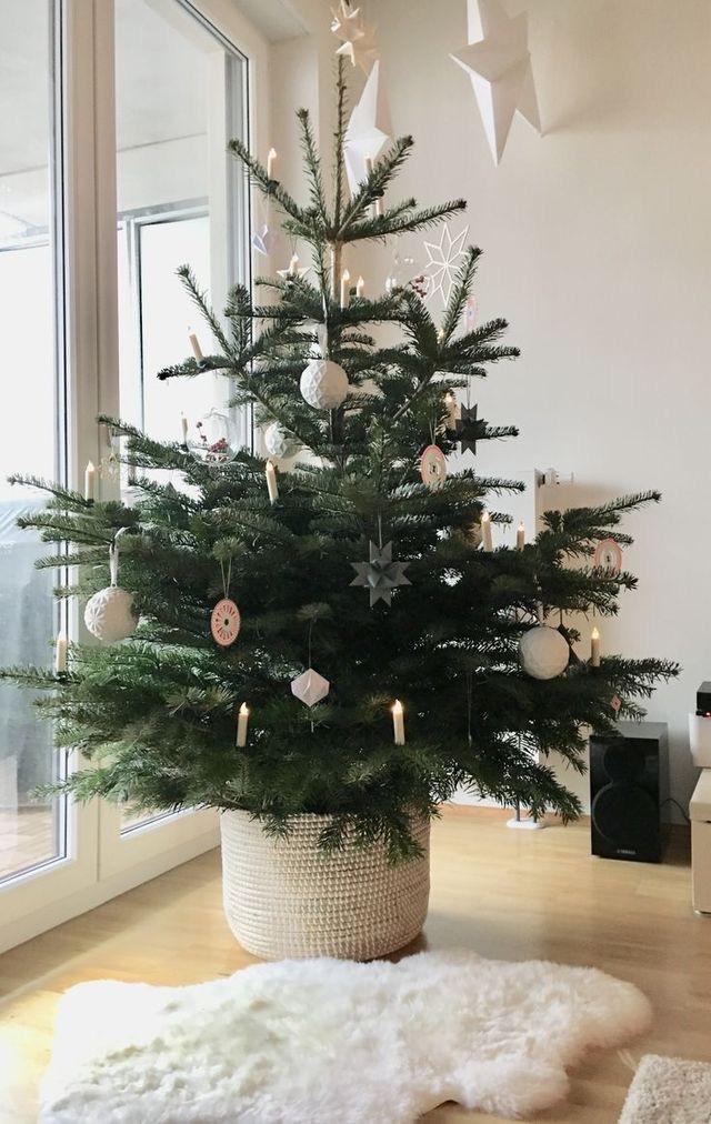 Najväčší symbol Vianoc, aký bude tento rok ... - Obrázok č. 1