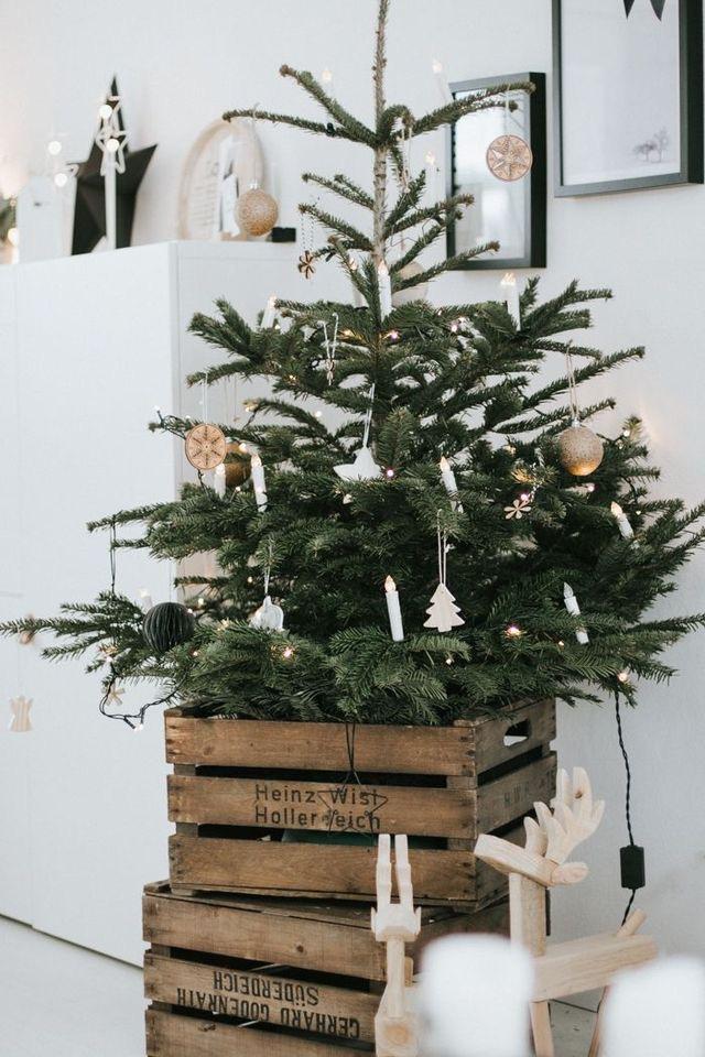 Najväčší symbol Vianoc, aký bude tento rok ... - Obrázok č. 87