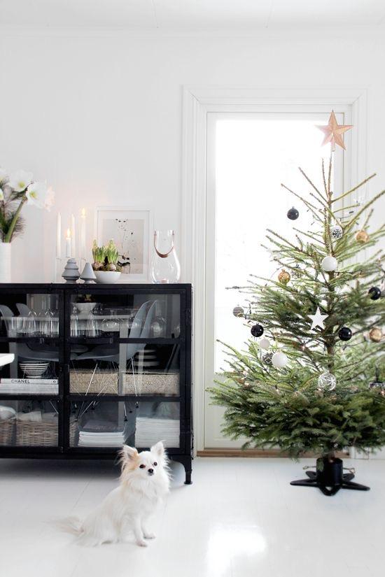 Najväčší symbol Vianoc, aký bude tento rok ... - Obrázok č. 88