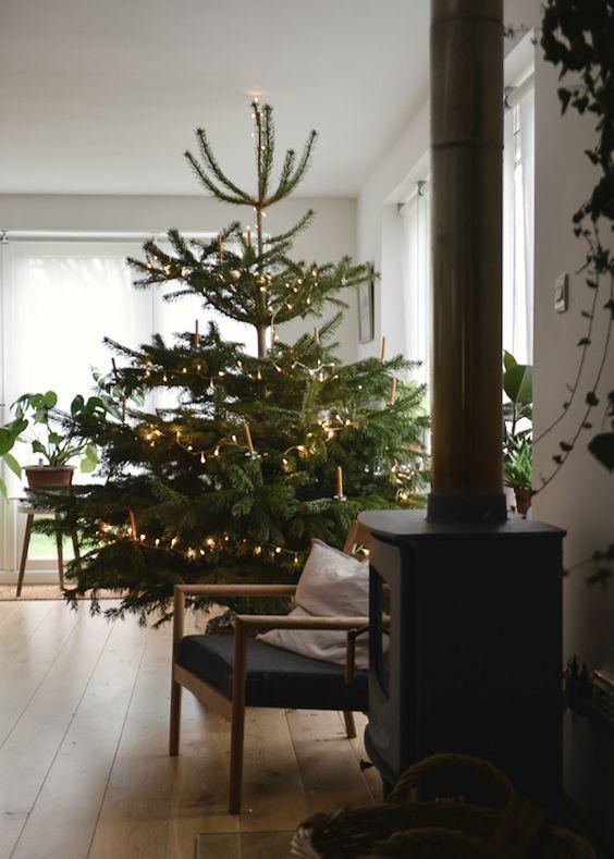 Najväčší symbol Vianoc, aký bude tento rok ... - Obrázok č. 97