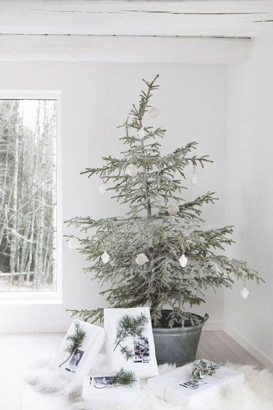Najväčší symbol Vianoc, aký bude tento rok ... - Obrázok č. 99