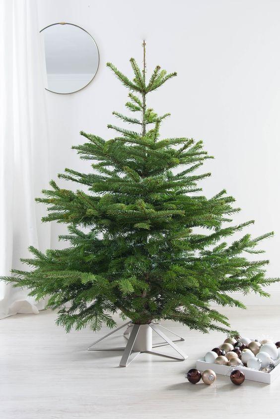 Najväčší symbol Vianoc, aký bude tento rok ... - Obrázok č. 257