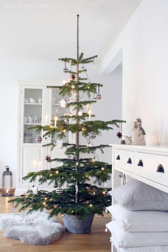 Najväčší symbol Vianoc, aký bude tento rok ... - Obrázok č. 265