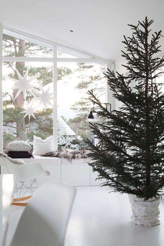Najväčší symbol Vianoc, aký bude tento rok ... - Obrázok č. 318
