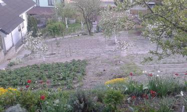 Rodičovská záhrada zhora