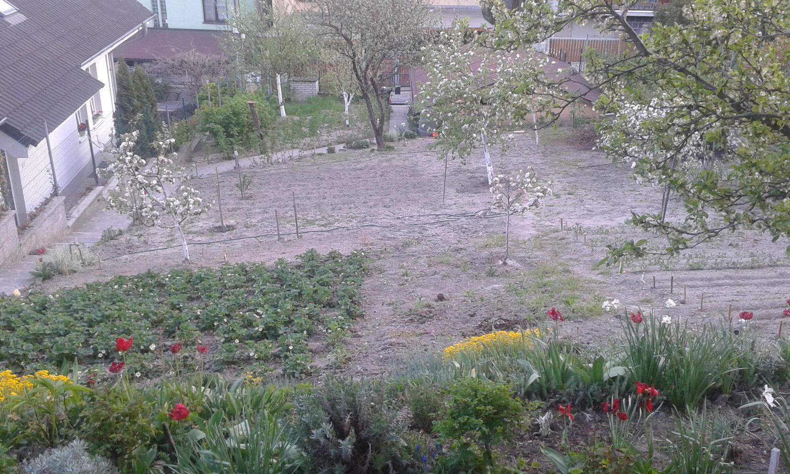 Naše átrium - Rodičovská záhrada zhora