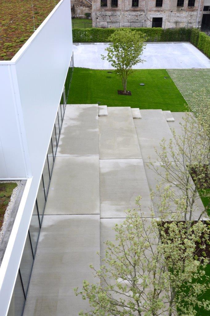 Zázračná škola pod zelenou strechou - Obrázok č. 5