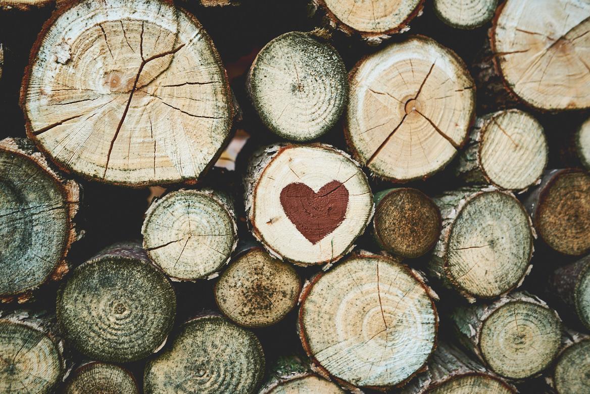 Anna{{_AND_}}Dalibor - Prostě miluju náš dřevník :-D