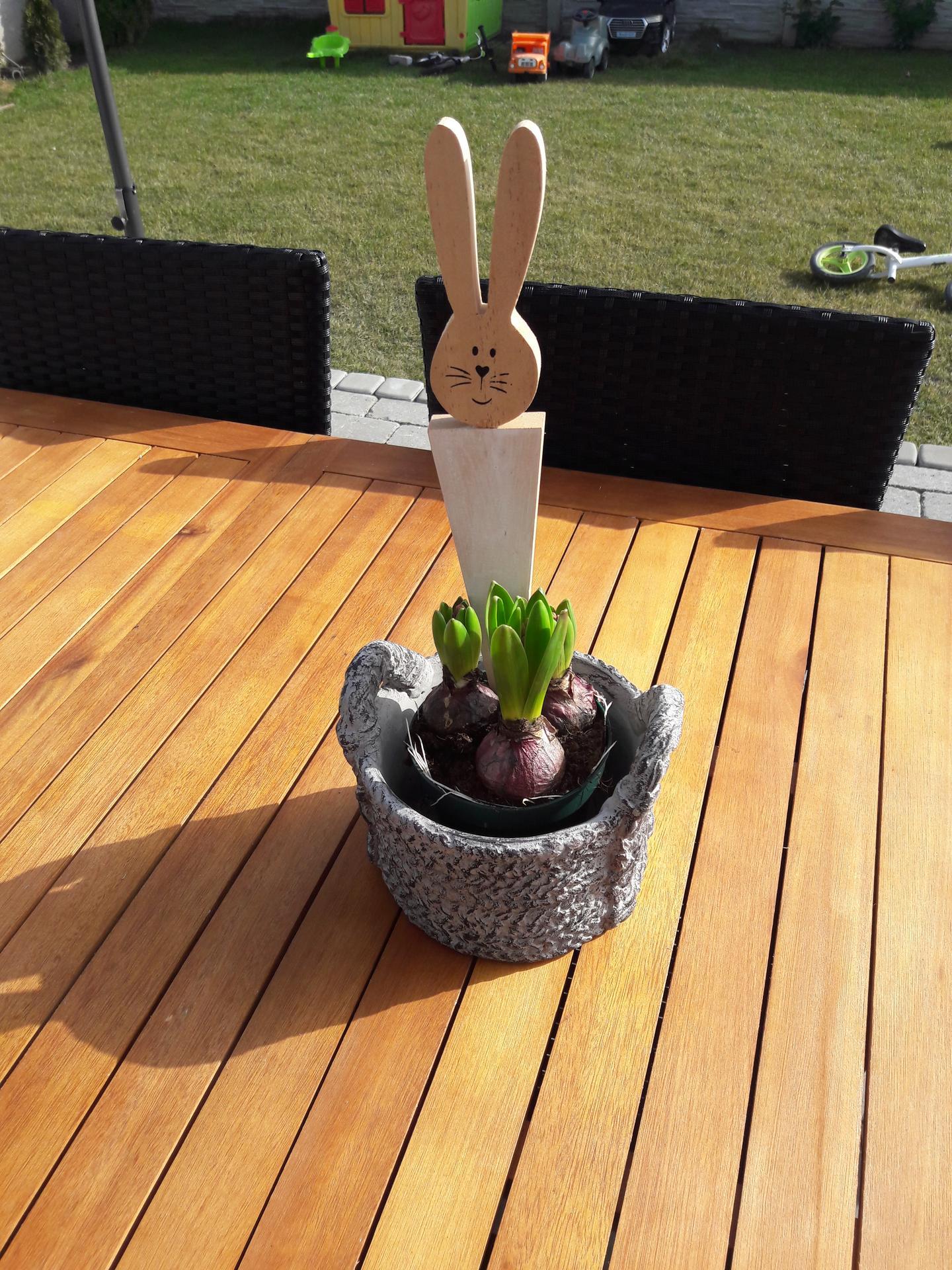 Záhrada 2021❤