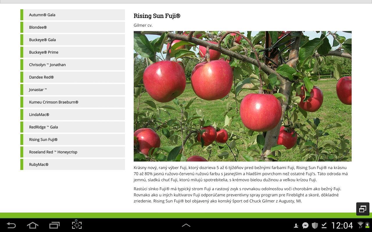 Nové odrody jabloni z... - Obrázok č. 1