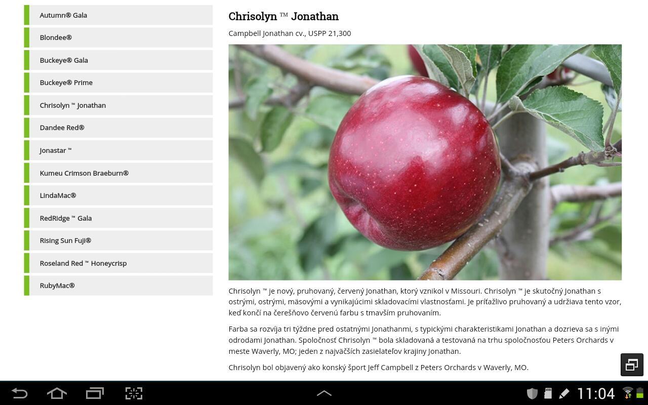 Nové odrody jabloni z... - Obrázok č. 2