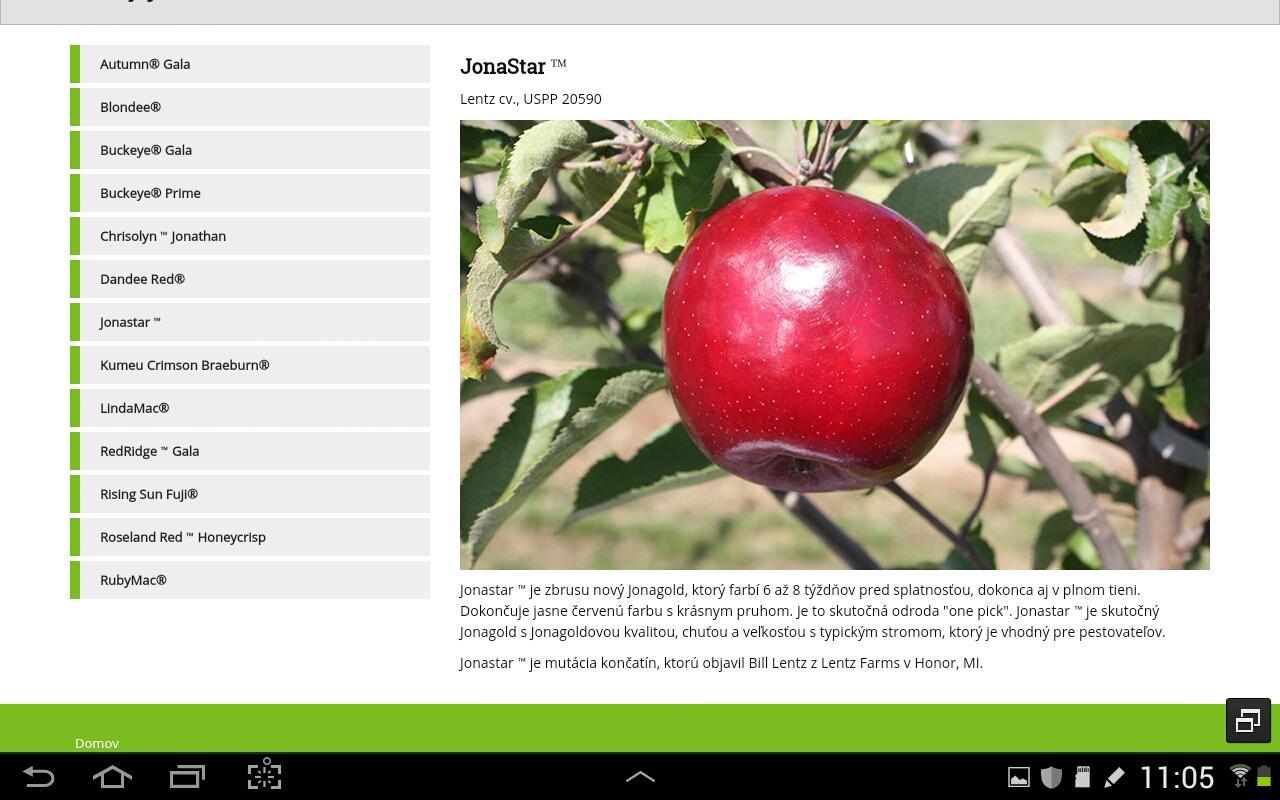 Nové odrody jabloni z... - Obrázok č. 4