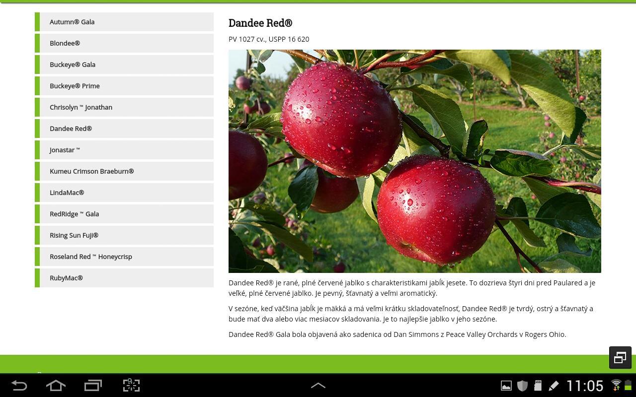 Nové odrody jabloni z... - Obrázok č. 3