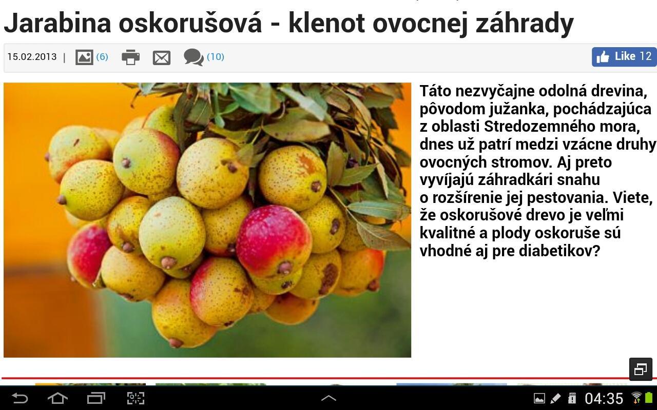 Jarabina hrušková - Tatarová... - Obrázok č. 2