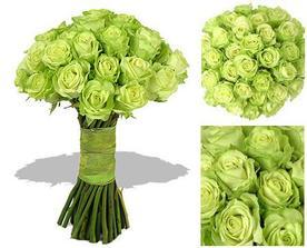 taketo zelene ruze by som chcela