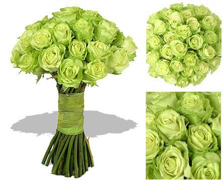 Žabkovo zelená...29.09.2007 - božská zelená- a v kombinácii s bielou ružou- no nádhera