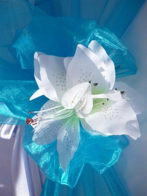 Něco takového bych si představovala na lavicích v kostele - bílá a tyrkysová organza a na ní květinka, možná růže, lilie, ještě nevím..