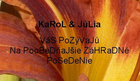 ♥ ORANGE ♥ - Pozvánka na záhradné posedenie po obrade - takto vyzerala tá po internete posielaná (v papierovej verzii bola iná - na dúhový papier žltý až červený čiernymi rovnakými písmenami napísané toto isté)
