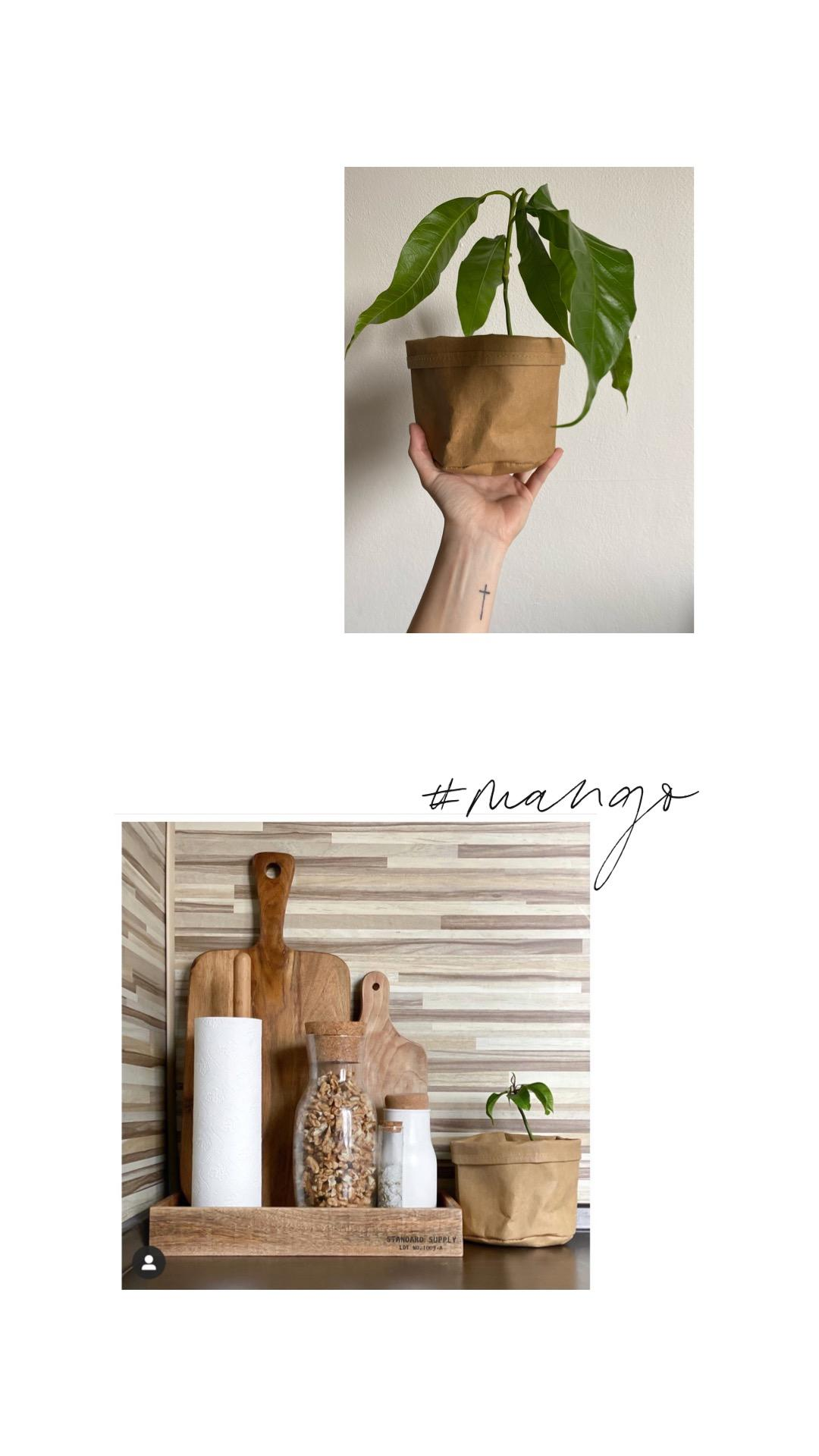 Náš byt ´20 - Obrázek č. 37