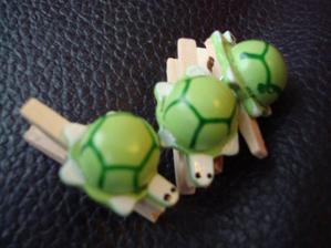 želvičky na jmenovky