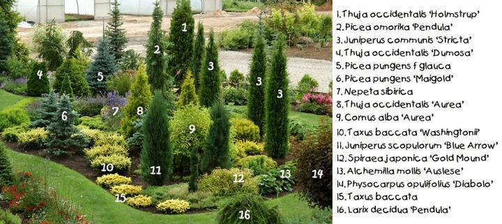 Zahrada - inspirace - Obrázek č. 40