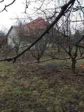 22.03.13 - Náš pozemok, ktorý bol predtým ovocný sad o ktorý sa však už dlho nikto nestaral ...