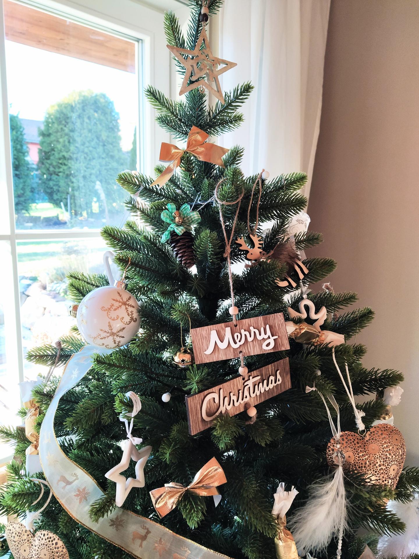 Vianoce - Obrázok č. 35