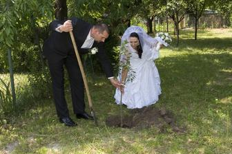 aj sme zasadili stromček, orgován... samozrejme fialový....